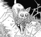 Soichi-s Beloved Pet